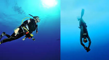 Diving for Dummy: What You Need to Prepare Before Taking Your First Dip