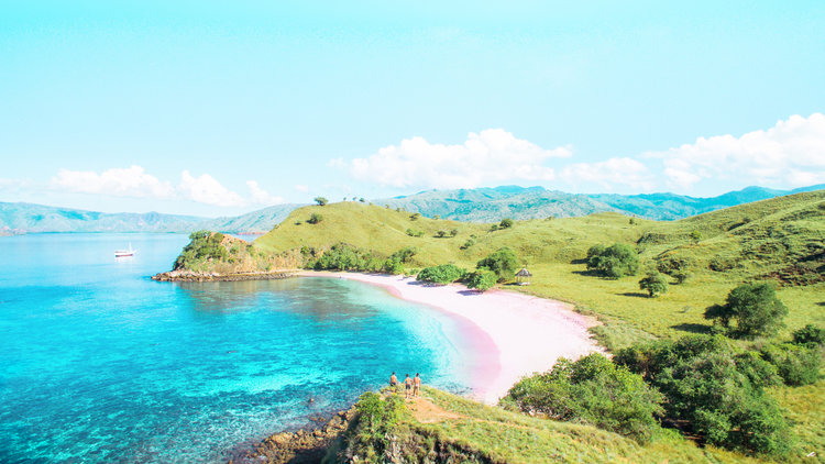 Traveler's Guide to Have the Best Komodo Island Trip