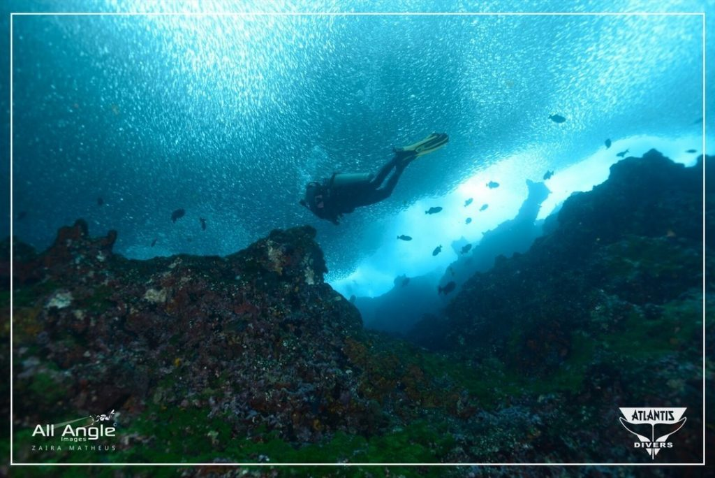 Best Scuba Diving In Bali