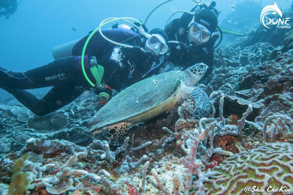Best Diving Plan in Bali