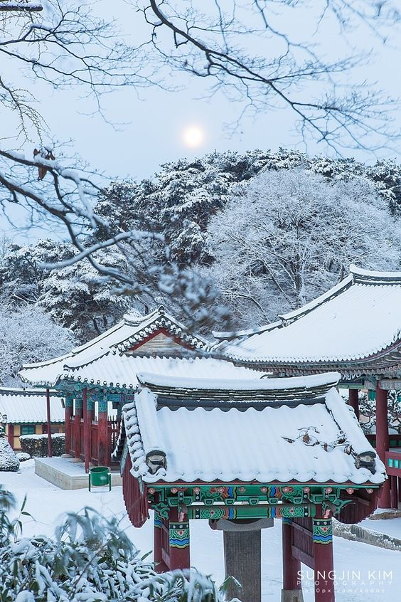 Best Things To Do in Seoul This Winter