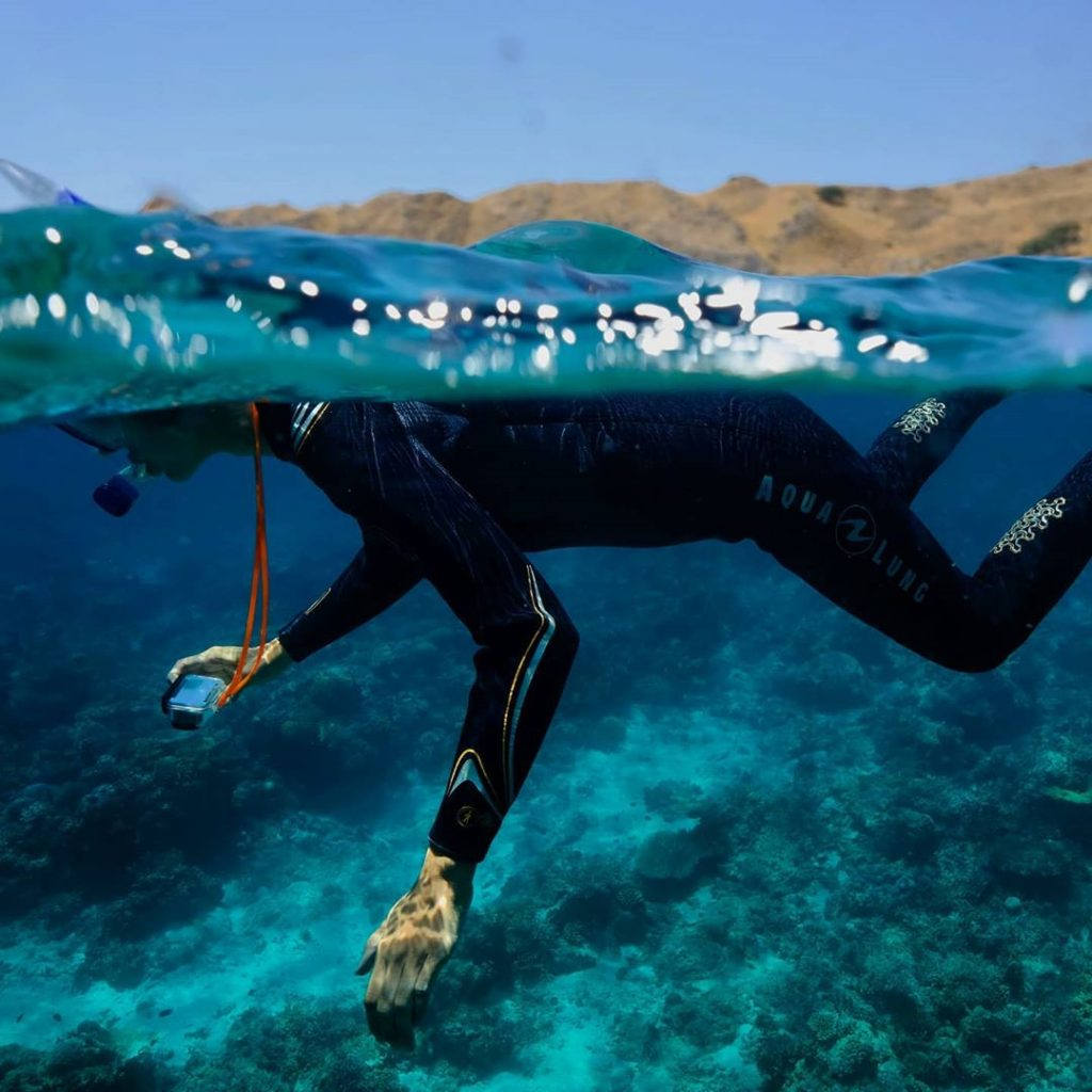 Diving in Komodo Basics: What to Prep!